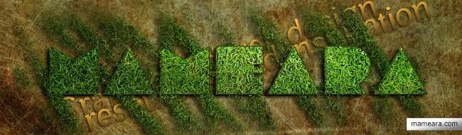 Grass textures - Free High Resolution Grass and Leaf Textures